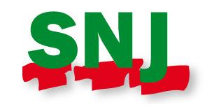 Représentativité syndicale : le ministère du Travail place largement en tête le SNJ
