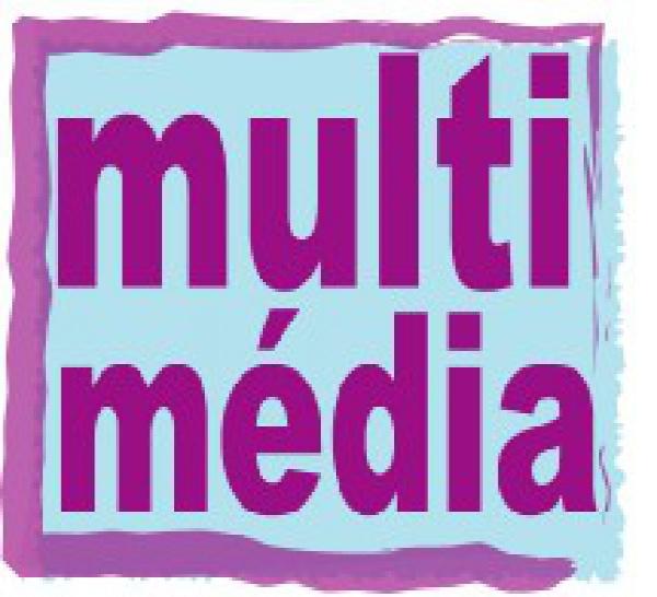 Multimédia : au delà de l'urgence