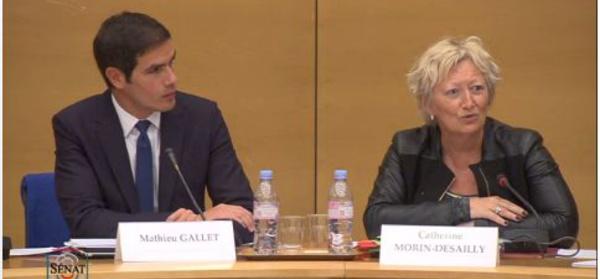 Audition de Mathieu Gallet au Sénat